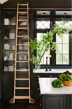 love the ladder for high stuff@  Homey Transitional Kitchen by Jessica Helgerson on HomePortfolio