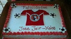 Xolos cake