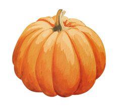 Pumpkin Drawing, Pumpkin Art, Cute Fall Wallpaper, Halloween Wallpaper Iphone, Autumn Crafts, Autumn Art, Autumn Cozy, Pumpkin Pictures, Pumpkin Pics