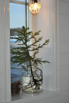 I saw small evergreens in jars like this all throughout shops in Norway during December. Sometimes with lights, but always beautiful and clean.