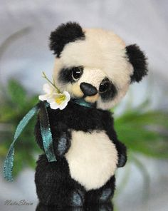 Panda Bob by NataStein