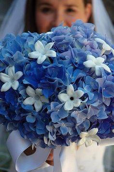 flores azules naturales nombres - Buscar con Google
