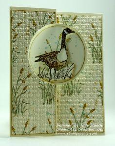 Wetlands -  Ann Schach