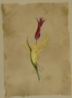 Tulip 3 (Gold, gouache cm) – Emine Süsoy – Meral Cetin – Join in the world of pin Beautiful Calligraphy, Calligraphy Art, Illumination Art, Islamic Patterns, Art Articles, Turkish Art, Stencil Patterns, Creative Artwork, Mandala