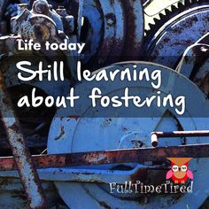 Still learning about fostering