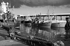 North Shields Fish Quay by Steve Cox