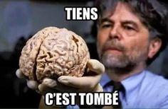 (59) News about #LEmissionPolitique on Twitter