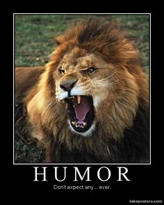 humor poster - Yahoo Search Results