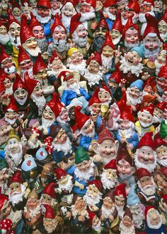 COMING SOON Gnome wrapping Paper!!! Gnomes crowded in front of the camera lens with scrubbed beards, freshly washed caps and Scandinavian Fjord smiles.