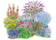 no-fuss flower garden plans for all climates + growing seasons