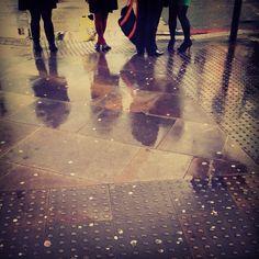 Rainy day reflections.  Photo by Sara Scobie