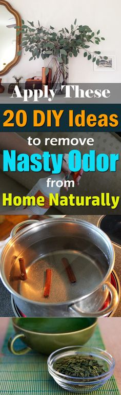 These 20 natural and inexpensive DIY ideas are super fine ways to deodorize the home.