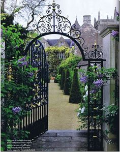 A wrought-iron gate flanked by mauve lilacs opens onto an avenue of tall topiary yew cones.