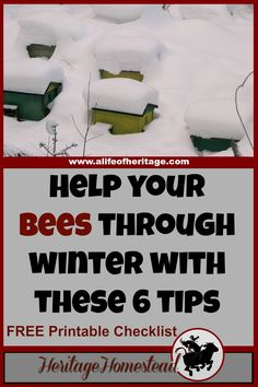 These 6 tips to winterizing bee hives will give you and your bees the boost they need to get through the winter months into spring and blooming flowers! Bee Hive Plans, Beekeeping For Beginners, Raising Bees, Bee Farm, Backyard Beekeeping, Bee Friendly, Bee Happy, Save The Bees, Hobby Farms