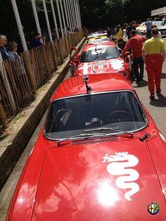 Alfa Romeo at Goodwood Festival Of Speed 2012
