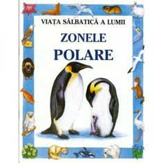 Zonele polare Penguins, Animals, Animales, Animaux, Penguin, Animal, Animais