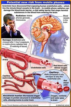 It's true~ Radiation to the Brain can contribute if not cause Brain Cancer. Keep the cell-phones at least 2 inches away from your head while talking. Mobile Tower, Systems Biology, Electromagnetic Radiation, E Mc2, Health Research, Medical Advice, Mafia, In This World, Cancer
