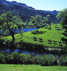 Horseback ride through the scenic areas at Alisal Guest Ranch and Resort in Solvang, California