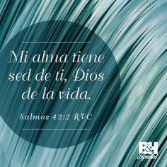 Mi alma tiene sed de ti, Dios de la vida. Salmos 42:2 RVC / La Biblia