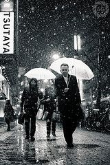 Shibuya in the snow: these people think I'm nuts, and they might very well be right :-) (Alfie | Japanorama)
