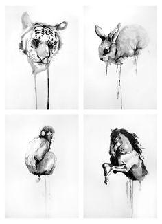 Animals serie by Elisa Ancori, via Behance
