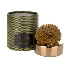 アブチロン ソラ ディフューザー グリーン(グリーン) Francfranc(フランフラン)公式サイト|家具、インテリア雑貨、通販