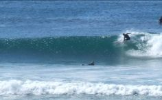more great surf in a quiet California beach town, nice beach camping