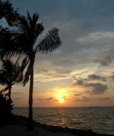 Sarasota, FL = Home