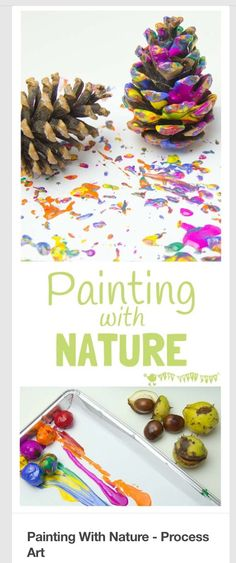 Art. This is a really good resource for teachers who teach those in Early Years/KS1. It's a way of incorporating nature into their art sessions. By using pine cones for example, it creates patterns which can then lead onto children looking at different plants that create different patterns when printed with paint.
