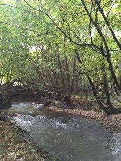 19 river landscape.   Kalavrita, Greece (Zachlorou area)