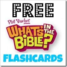 What's in the Bible Flashcards!