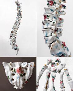 Porcelain anatomy sculptures by María García-Ibáñez