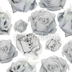 Rosa Graphia by Viktoryia Yakubouskaya available for download as a vector file on patterndesigns.com