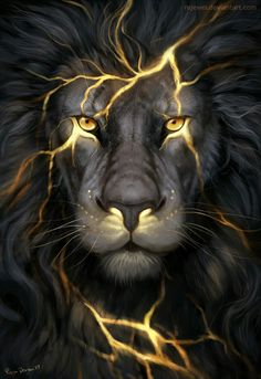 Lion Gold Poster, Banner or Canvas for sale.This Lion poster is printed on premium stock poster and is shipped to your door within days.The banners come with tw Fantasy Creatures, Mythical Creatures, Animals And Pets, Cute Animals, Wild Animals, Lion Pictures, Lion Images, Lion Of Judah, Lion Art