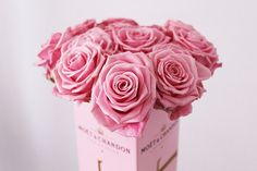 Photograph Pink roses Moet et Chandon Champagne by itsaflowerthing