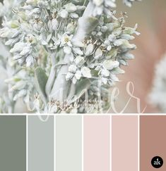 a winter-floral-inspired color palette // pastel greens and dusty rose
