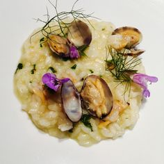 Clams and lemon acquerello risotto . Unique risotto !