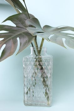 Vase Mad men Mad Men, Glass Vase, Home Decor, Diamond Shapes, Decoration Home, Room Decor, Interior Decorating