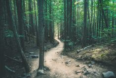 Best Hikes In New York State (3)