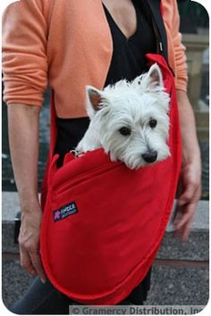 Fundle Pet Dog Cat Carrier Bag Adjustable Strap Standard Black * Click image for more details. (This is an affiliate link) Pet Dogs, Dogs And Puppies, Dog Cat, Pets, Doggies, West Highland Terrier, Diy Pet, Airline Approved Pet Carrier, Pet Sling