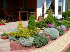 zieleń na skarpie przy wejściu do domu - Szukaj w Google Landscape Design, Garden Design, Front Yard Landscaping, Landscaping Ideas, Evergreen Garden, Backyard, Front Yards, Outdoor Pool, Google