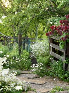 A limestone path, lined with wild daisies, is the centerpiece of this backyard. #gardening #landscaping