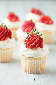 Angel Food Cupcakes with Cream Cheese Whipped Cream and Fresh Berries