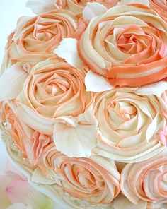 LOVE THE ROSES--AND THE PIPING TECHNIQUE--TWO COLORS IN ONE BAG FOR THE FROSTING!