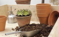 Costruire un piano di lavoro per il tuo giardinaggio