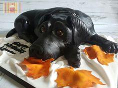 Black Labrador - Cake by Kokoro Cakes by Kyoko Grussu 10 Birthday Cake, Dog Birthday, 10th Birthday, Vet Cake, Dinasour Cake, Gravity Defying Cake, Geode Cake, Fantasy Cake, Animal Cakes