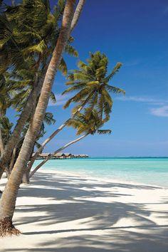 Ilhas Maldivas ❤️