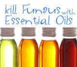7 Powerful Essential oils used for nail fungus