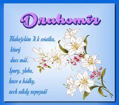 Drahomír  Blahoželám Ti k sviatku, ktorý dnes máš. Spory, zlobu srd,  zášť hnev , hádky, nech nikdy nepoznáš