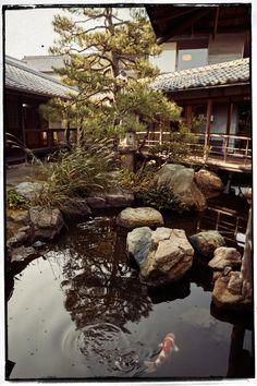 Japan - Part I - Kyushu und die Kunst des Wabi-Sabis — What´s Cooking - Food-Blog